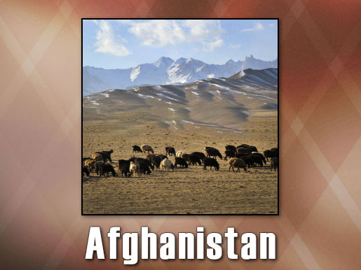 Afghanistan Prayer Station